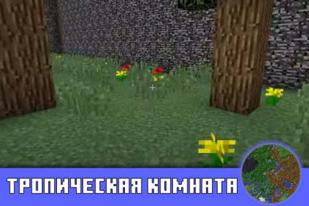 Тропическая комната на карте Найти кнопку для Minecraft PE
